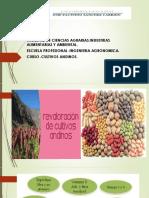 8 Cultivos andinos