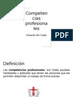 Competencias Profesionales-Eduardo Atri Cojab