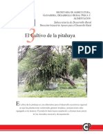 El cultivo de la Pitahaya.pdf