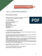 Ejemplo de Estudio Topografico de Puente