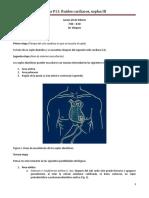 FP11 Ruidos Cardíacos Soplos III Dr. Vasquez