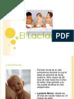 ellactante-120514000155-phpapp01