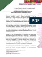 Posicionamiento de las mujeres jóvenes indígenas peruanas del ECMIA