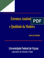 Arquivo 02 - Anatômia e Qualidade e Da Madeira-Agosto2007