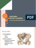 anatomiapelvisycadera-180119153801