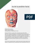 Fisioterapia de La Parálisis Facial