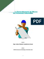 apostila de gerenciamento de riscos para eng. ambiental.doc