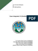 2018 Caso Integrador Módulo IV Kinelfelter Versión Final 2 (El Mero Mero)