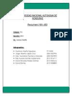 Resumen NIA 450