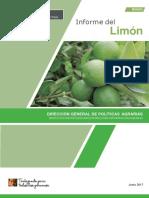 Boletin Informe Limon