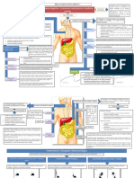 Mapa Conceptual Digestivo