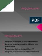 236780288-Program-Ppi.pptx