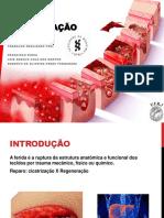Cirurgiageral Bi Seminrio3 Cicatrizao 140426133214 Phpapp01