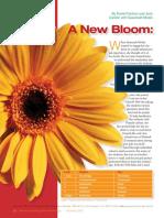 Bloom New Taxonomy