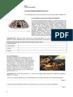 GUIA DE TIEMPOS PRIMITIVOSN°2.doc