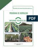 Informe_Tecnico_Hortalizas2010.pdf