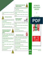 TRIPTICO-PLAN-DE-EMERGENCIA.pdf