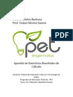 ExerciciosResolvidos.pdf
