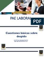 PAE LABORAL - Adicional - Despido.pptx