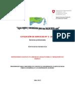 Tdr(Lleno) Supervision No. 3 Boca de Guineo Patuca