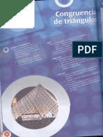144146415-congruencia-triangulos-2.pdf