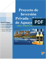 PROYECTO DE INVERSION PRIVADA - LICOR DE AGUAYMANTO.pdf