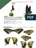 Mariposa Papilio.pdf
