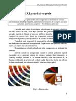 14.lacuri_si_vopsele.pdf