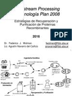 Clase DownStream Biot2008 - Editado.pdf