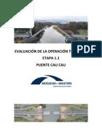 Informe del Puente Cau Cau