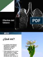 1500327714Base Teorica Efectos Del Tabaco