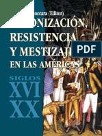Colonización Resistencia y Mestizaje