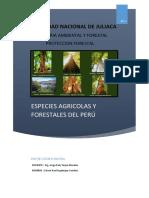 Especies Agricolas y Forestales Proteccion Forestal EDWIN INGALUQUE