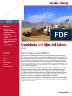 Summary Report Candelaria