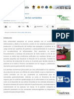 Bronquitis Verminosa de Los Rumiantes - Engormix
