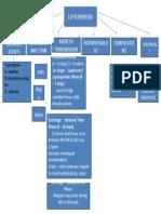 Concept Map Lepto