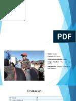 AVD-Vestuario (1).pptx