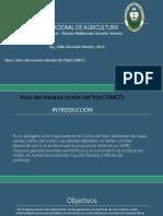 mancia (vmcf).pptx