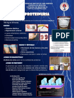 Banner Proteinuria