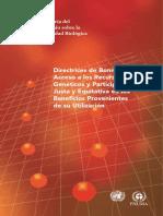 Directrices de Bonn