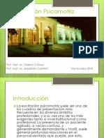Excitación psicomotriz.pdf