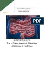 Guia Practica Digestivo1