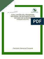2000-2001 Pronare Durango