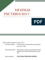 Program Kerja Pse 2017