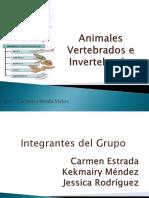 Animales Vertebrados e Invertebrados (1) (1)