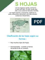 Las Hojas (descripcion).pdf