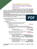 Tema01 Organizacion de Los Cuerpos de Plantas