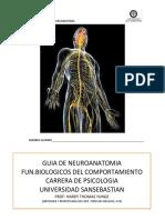 Guia de Laboratorio Neuroanatomia Psicologia