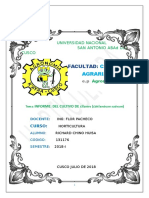 CHINO HUISA INFORME Imprimir (Autoguardado)