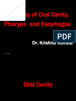 1. Anatomy of Oral Cavity, Pharynx and Esophagus
